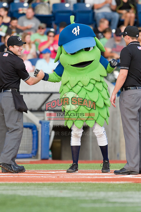 Home plate umpire Tom West and first base umpire Joe Schwartz ham it up with Hillsboro Hops mascot Barley prior to a game between the Hops and Tri-City Dust Devils at Ron Tonkin Field in Hillsboro, Oregon on August 24, 2015.  Tri-City defeated Hillsboro 5-1. (Ronnie Allen/Four Seam Images)