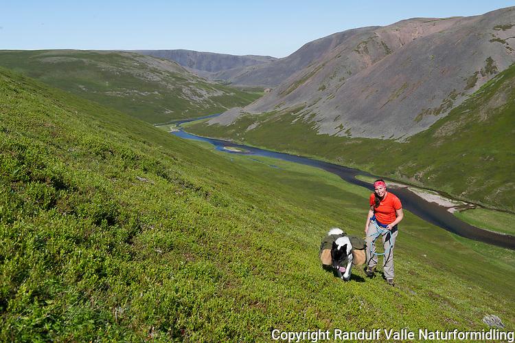Dame og grønlandshund med kløv i Varanger nasjonalpark. ---- Woman and pack dog.