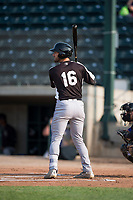 Grand Junction Rockies designated hitter Niko Decolati (16) at bat during a Pioneer League game against the Missoula Osprey at Ogren Park Allegiance Field on August 21, 2018 in Missoula, Montana. The Missoula Osprey defeated the Grand Junction Rockies by a score of 2-1. (Zachary Lucy/Four Seam Images)