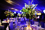 Bat Mitzvah Decor<br /> Tappan Hill Mansion