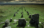The Graveyard, at Cawsand Beacon, Nr South Zeal, Dartmoor  Devon England. At the head of this triple stone row there is the remains of a burial cyst.