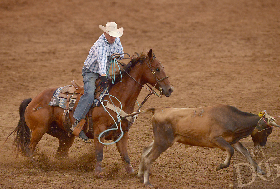 NWA Democrat-Gazette/BEN GOFF @NWABENGOFF<br /> Cody Heflin competes in the team roping event Friday, June 23, 2017, during the third night of the 73rd annual Rodeo of the Ozarks at Parsons Stadium in Springdale. Heflin and teammate Thompson Berryhill were the only team of the night to get a clean rope, with a time of 8 seconds.