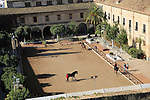 Raised angle view courtyard of equestrian centre, Caballerizas Reales de Cordoba, Royal Stables, Cordoba, Spain