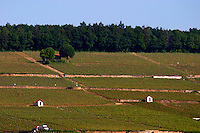 vineyard hut corton hill aloxe-corton cote de beaune burgundy france