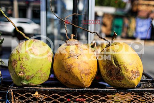 Puerto Pe&ntilde;asco, Sonora, 20 de octubre de 2017.- <br /> La venta de Artesan&iacute;as, manualidades  y gastronom&iacute;a  mexicana es uno de los atractivos del Puerto Pe&ntilde;asco, subsede en Sonora  del 45 Festival Cervantino.<br /> <br /> Hoy Puerto Pe&ntilde;asco recibe por sexta ocasi&oacute;n las actividades de la edici&oacute;n 45 del Festival Internacional Cervantino, &uacute;nica subsede en el noroeste del pa&iacute;s que reunir&aacute; a mil 200 artistas. <br /> <br /> <br /> (Foto: Luis Gutierrez /NortePhoto.com)