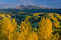Aspen and The Flat Tops<br />   from Ripple Creek Pass<br /> White River National Forest<br /> Rocky Mountains,  Colorado