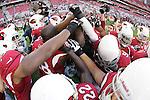 vs Detroit Lions 12/16/12