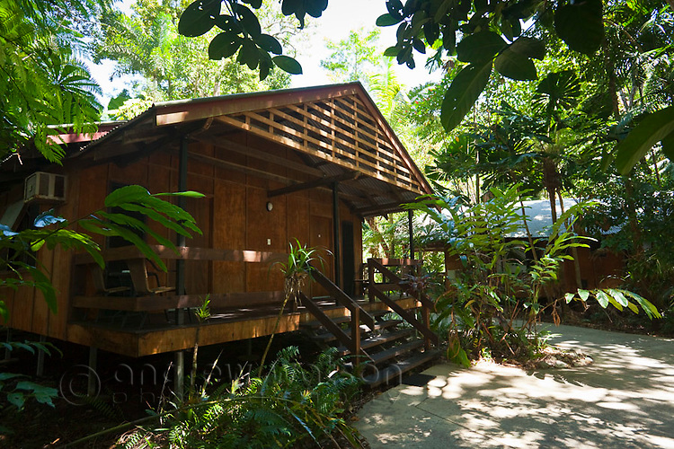 Rainforest cabin at PK's Jungle Village.  Cape Tribulation, Daintree National Park, Queensland, Australia