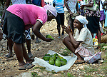 A woman sells avocados in a weekly market in Despagne, an isolated village in southern Haiti where the Lutheran World Federation has been working with residents to improve their quality of life.