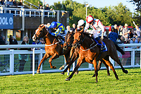 Winner of The Derek Burridge Golf & Racing Trophies Handicap Twenty Years on (nearside) ridden by Finley Marsh and trained by Richard Hughes during Evening Racing at Salisbury Racecourse on 25th May 2019