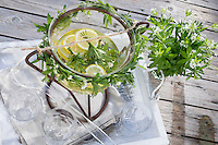 Waldmeister-Bowle, Waldmeisterbowle, Mai-Bowle, Maibowle, Maiwein, Maitrank, Bowle mit Waldmeister, Weißwein, Zitrone, Wald-Meister, Galium odoratum, Sweet Woodruff, sweetscented bedstraw, May wine, Aspérule odorante