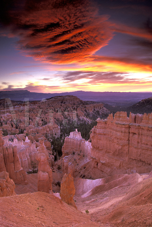 Sunrise at Sunset Point.  Bryce National Park, Utah.