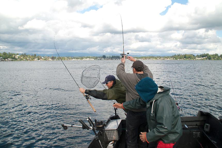 Kokanee Salmon (Landlocked Sockeye Salmon) Lake Stevens, Washington, fishing with guide John Thomas of Rotten Chum Guide Service.