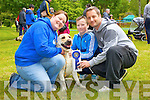 Pictured at the Dog Show at Feile na Bl&aacute;th on Saturday are:<br /> Stacey Wallace, Shane Murphy, with their 3 dogs Ginger, Prince and Kia.<br /> Pictured at the dog show at Feile na Bl&aacute;th at Tralee Town Park on Saturday were from left: Emma O'Donnell, Adam Cronin, Shane Lacey, with Milo the dog from Tralee
