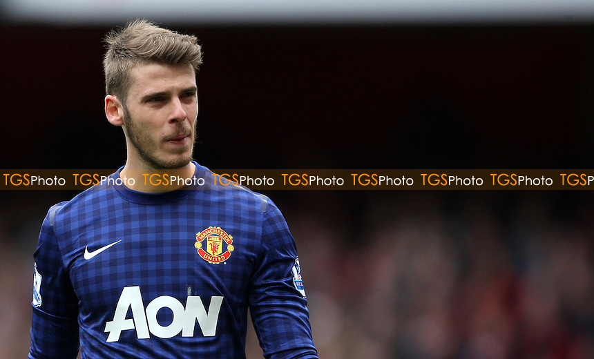 David De Gea of Manchester United - Arsenal vs Manchester United, Barclays Premier League at the Emirates, Arsenal - 28/04/13 - MANDATORY CREDIT: Rob Newell/TGSPHOTO - Self billing applies where appropriate - 0845 094 6026 - contact@tgsphoto.co.uk - NO UNPAID USE.