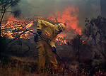 August 19, 1992 Angels Camp, California -- Old Gulch Fire— Lodi firefighter battles to keep fire from spreading on Fullen Road.  The Old Gulch Fire raged over some 18,000 acres, destroying 42 homes while threatening the Mother Lode communities of Murphys, Sheep Ranch, Avery and Forest Meadows.