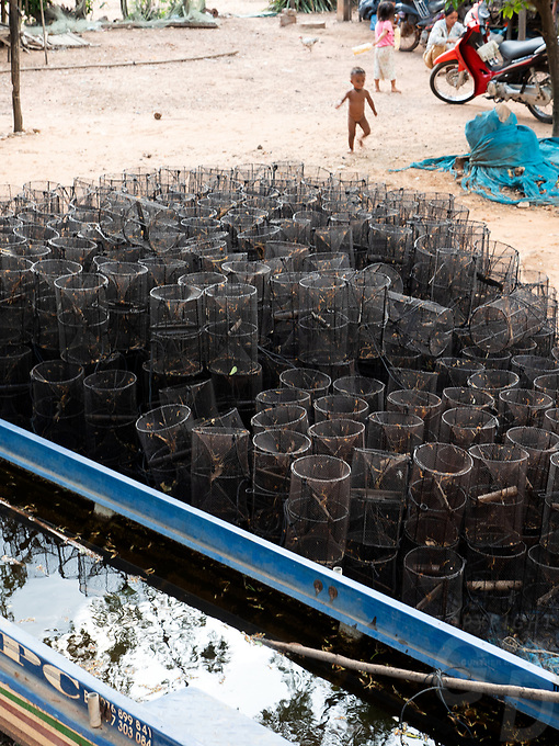 Activities and way of life, around and near the Tonle Sap Lake, Siem Reap area, Cambodia  fish traps at a village near the Tonle Sap,