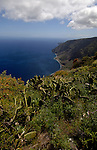 View of the Las Playas coastline showing the Parador Nacional, El Hierro, Canary Islands. Spain..With prickly pear and spring flowers in the foreground.