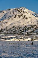 S.Zuray Mushing near/ ckpt Rainy Pass /'96Iditarod