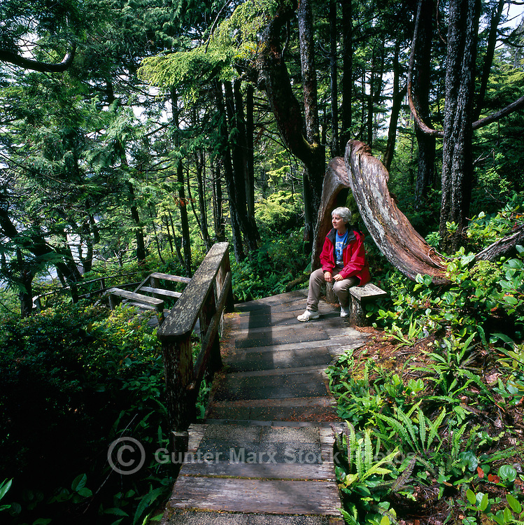 Hiker resting on Bench on Boardwalk Trail along Pacific West Coast of Vancouver Island, near Ucluelet, BC, British Columbia, Canada (Model Released)