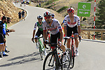 Marco Marcato (ITA) UAE Team Emirates on the final Cat 1 climb up to Observatorio Astrofisico de Javalambre during Stage 5 of La Vuelta 2019 running 170.7km from L'Eliana to Observatorio Astrofisico de Javalambre, Spain. 28th August 2019.<br /> Picture: Eoin Clarke | Cyclefile<br /> <br /> All photos usage must carry mandatory copyright credit (© Cyclefile | Eoin Clarke)