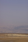 Dead Sea Valley, a dry area at the northern part of the Dead Sea