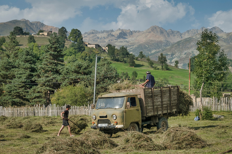 Harvesting the hay is done by simple hand labor (pitchfork and a truck) in the upper mountain valley of Svanti, northern Georgia.