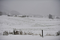 An October snowfall covers otherwise green fields in the Val-de-Ruz, Switzerland