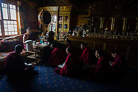 Bon monks learn Buddhist texts at Yong Zhong Lin Monastery in Xigaze, Tibet, China, 2015. The original Bon (Yungdrung Bon) was founded around 16,000 BC,  according to the followers who are called Bonpo. Today, Bon can be found in the more isolated parts of northern and western Tibet. According to the Chinese census, about 10% of Tibetans (about 100,000 people) follow Bon.