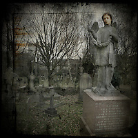 Stone angel memorial in a graveyard
