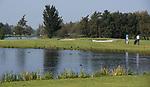 SCHIPLUIDEN - 2017 - hole Rood 4, Golfbaan DELFLAND . COPYRIGHT KOEN SUYK