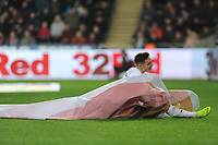 Connor Roberts of Swansea City collides with sky bet advertisement during the Sky Bet Championship match between Swansea City and Norwich City at the Liberty Stadium, Swansea, Wales, UK. Saturday 24 November 2018