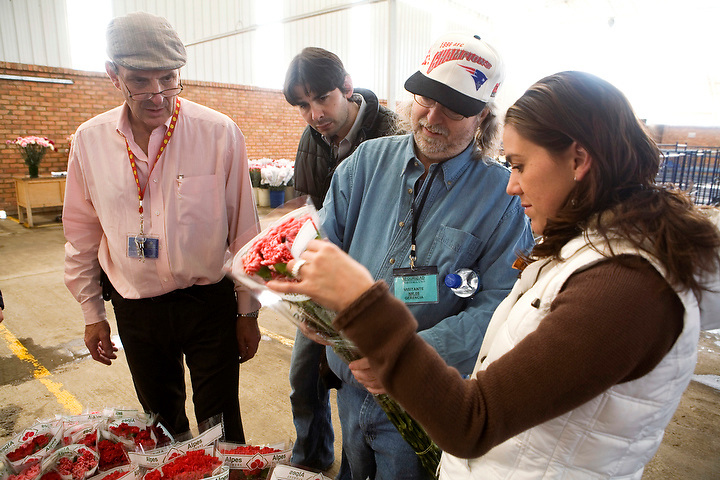 BOGOTA, COLOMBIA -- JANUARY 21: Peter Beyfus, manager of Alpes Flowers in Bogota looks over carnations with American buyers on January 21, 2007.  International buyers tend to visit Colombia growers at the end of January to make sure things are running smoothly before the big Valentine's Day rush. (Photo by Dennis Drenner/Aurora).