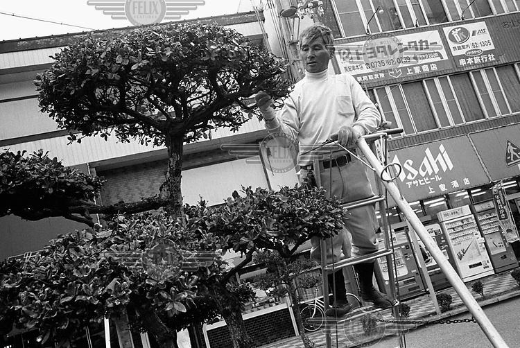 Gardener pruning a tree outside Kushimoto train station.