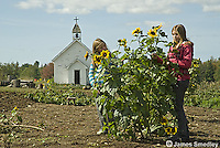 Young girls standing beside sunflowers