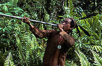 Iban Warrior with his Blowpipe in Borneo, Malaysia, these people used to be headhunter in the Jungles of Borneo