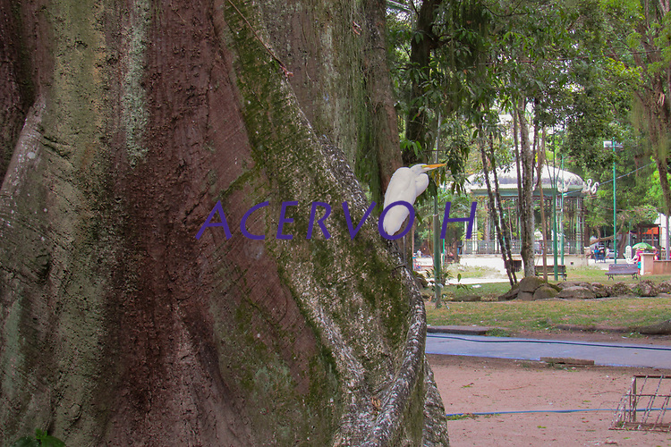 Praça Batista Campos.<br /> Belém, Pará, Brasil.<br /> Foto Laura Rocha