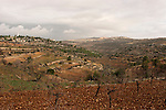 "Judea, Gush Etzion. A view of settlements  Rosh Tzurim (left) and Neve Daniel (right) as seen from the ""Path of the Patriarchs"""