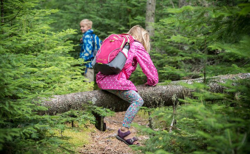Family hiking at Lake Superior Provincial Park, Ontario, Canada.