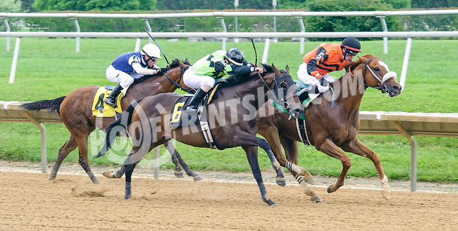 Celtic Moon winning at Delaware Park on 6/21/17