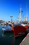Fishing boat docked, Los Cristianos harbour, Tenerife, Canary