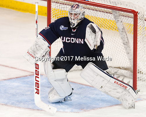 Rob Nichols (UConn - 31) - The Boston College Eagles defeated the visiting UConn Huskies 2-1 on Tuesday, January 24, 2017, at Kelley Rink in Conte Forum in Chestnut Hill, Massachusetts.