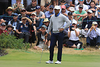 Tiger Woods (USA) on the 4th green during the Second Round - Foursomes of the Presidents Cup 2019, Royal Melbourne Golf Club, Melbourne, Victoria, Australia. 13/12/2019.<br /> Picture Thos Caffrey / Golffile.ie<br /> <br /> All photo usage must carry mandatory copyright credit (© Golffile | Thos Caffrey)