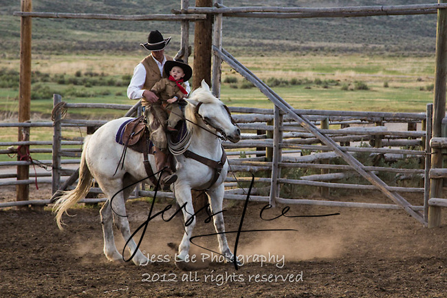 Comes a horseman Cowboys working and playing. Cowboy Cowboy Photo Cowboy, Cowboy and Cowgirl photographs of western ranches working with horses and cattle by western cowboy photographer Jess Lee. Photographing ranches big and small in Wyoming,Montana,Idaho,Oregon,Colorado,Nevada,Arizona,Utah,New Mexico.