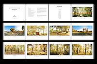 Folio Title: Journey In The Woods, Autumn Light<br /> Size: 8 x 10.5 Inch<br /> Price: 180$ <br /> Photographs: Each folio consisted of 15 photographs<br /> Creation: This folio is handmade, design and hand-signed by Paul Chong<br /> Edition: Only 5 copies of folio will be release for every new edition<br /> Shipping: Free worldwide delivery