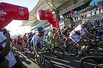 World Champion Peter Sagan (SVK) Tinkoff-Saxo and the rest of the peloton start Stage 4, The Yas Stage, of the 2015 Abu Dhabi Tour running 110 km 20 laps around the Yas Marina Circuit, Abu Dhabi. 11th October 2015.<br /> Picture: ANSA/Angelo Carconi | Newsfile
