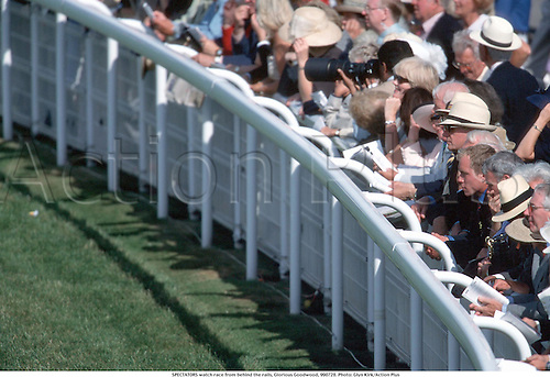 SPECTATORS watch race from behind the rails, Glorious Goodwood, 990728. Photo: Glyn Kirk/Action Plus...1999.crowd.horse racing.equestrian