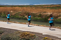 Three slow shutter images are combined to convey motion as a runner passes by with the Hayward marsh and San Francisco skyline in the background.