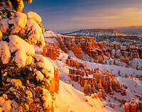 USA, Utah, Bryce Canyon National Park, Fresh snow blankets the incredible hoodoo formations at sunrise