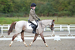 Stapleford Abbotts. United Kingdom. 06 October 2019. Arena 2. Essex Riding Club Winter Dressage & Combined Training Qualifiers. Brook Farm training centre. Essex. UK. Credit Ellen Szalai/Sportinpictures.~ 06/10/2019.  MANDATORY Credit Garry Bowden/SIP photo agency - NO UNAUTHORISED USE - 07837 394578